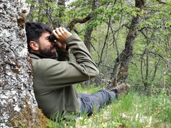 Erithacus - Observación de Naturaleza